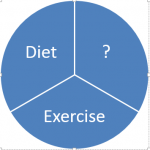 pie graphic showing Diet, Exercise and ?