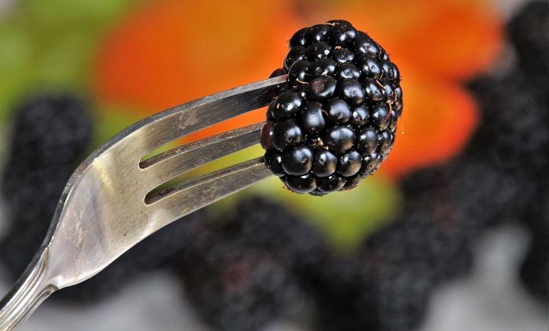 fork with a berry on it