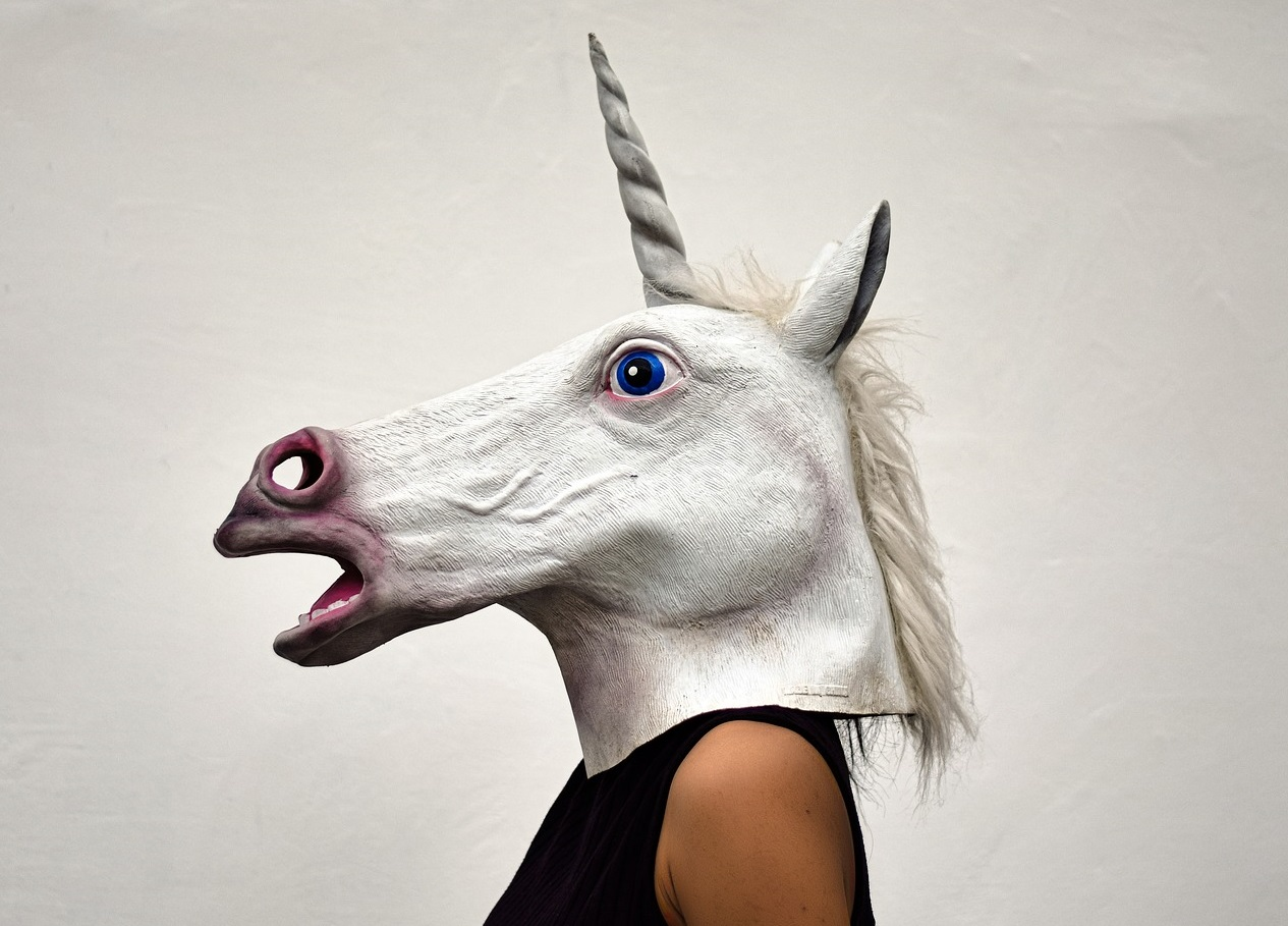 woman wearing a unicorn mask